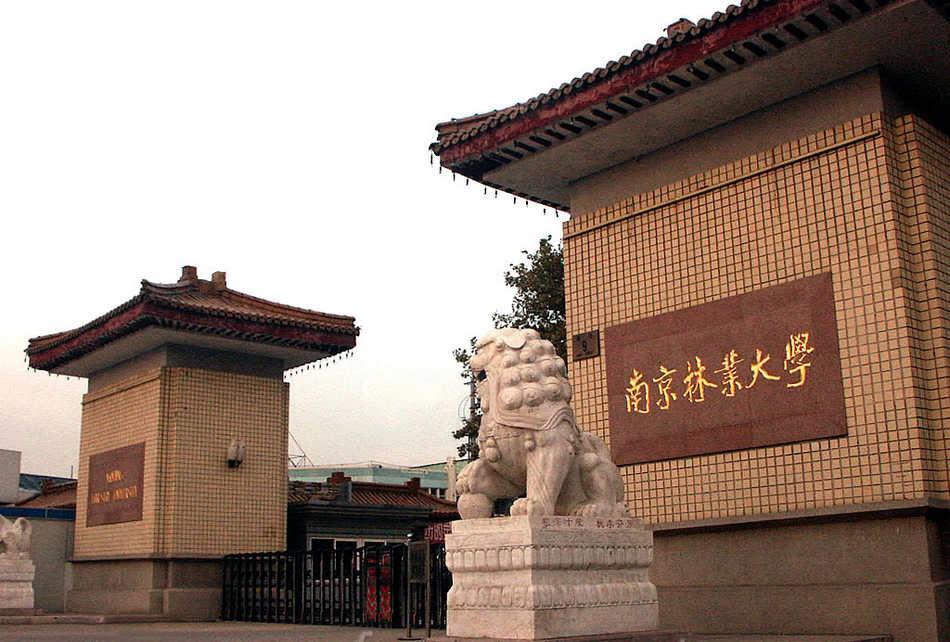 南京林业大学周悍东的联系方式,听说是个叫兽?图片